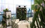 植物为啥能24小时净化空气?这场活动有答案