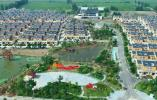 打造引领区、示范区!江苏明确今年农业农村现代化目标任务