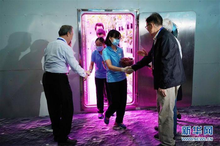 """5月15日,""""月宫一号""""实验室内,志愿者刘慧(中)与其他三位志愿者走出舱门。"""