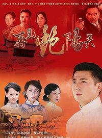 再见艳阳天 DVD版
