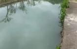市民巡访员暗访东钱湖曝光不文明现象 部门回应(附对比图)