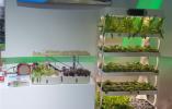 全国新农民新业态创业创新大会在南京开幕