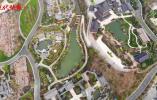 """废弃矿坑里修复""""生态疮疤"""",江苏省园博会13座城市展园这样建起"""