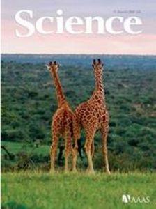 科学杂志封面