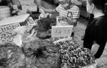 阳澄湖大闸蟹开捕 温州农贸市场部分蟹价降两三成
