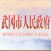 武岡市發展和改革局