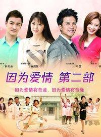因为爱情 第二部 DVD版
