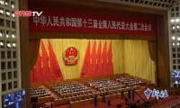 十三届全国人大二次会议闭幕 代表关注教育、民生等议题