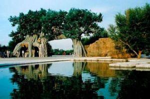 成吉思汗草原