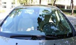 汽车挡风玻璃