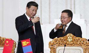 中国国家主席习近平与蒙古国总统查希亚·额勒贝格道尔吉