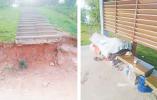 基础设施破损 人行道难行人 义乌莲塘公园有待规范治理